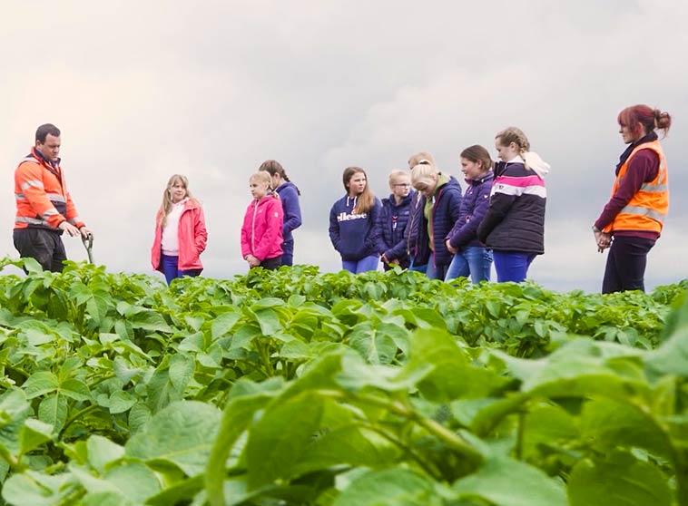 Farming in Lincolnshire image